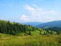 De zomer in Karpatische bergen, de Oekraïne Royalty-vrije Stock Afbeelding