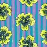De zomer kleurrijk naadloos patroon met hibiscusbloemen Stock Afbeeldingen