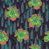 De zomer kleurrijk naadloos patroon met tropische installaties en hibiscusbloemen Royalty-vrije Stock Foto