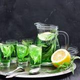 De zomer koude groene drank met dragon, munt en citroen in glaskaraf en kleine schoten met ijs, in nadruk in nadruk royalty-vrije stock foto