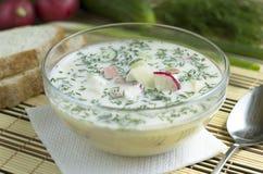 De zomer koude soep met verse groenten en worst Stock Afbeelding