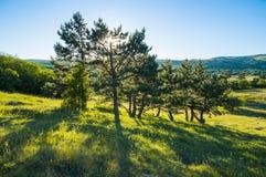 De zomer Krimmountain view Royalty-vrije Stock Foto's