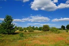 De zomer landelijk landschap stock foto
