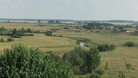De zomer landelijk landschap stock videobeelden
