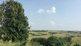 De zomer landelijk landschap stock footage