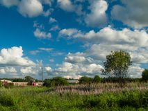De zomer landelijk landschap Stock Afbeelding