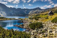 De zomer in 5 merenvallei in Hoge Tatra-Bergen, Polen Stock Fotografie