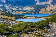 De zomer in 5 merenvallei in Hoge Tatra-Bergen, Polen Stock Afbeeldingen