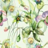 De zomer naadloos patroon met wilde bloemen Royalty-vrije Stock Afbeelding