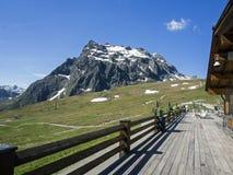 De zomer in Oostenrijk Stock Fotografie