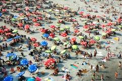 De zomer op de rivier Donau in Servië Stock Fotografie