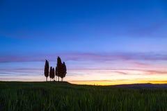 De zomer op het gebied van Toscanië in de zonsopgang Stock Afbeeldingen
