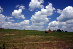 De zomer op het landbouwbedrijf stock foto's