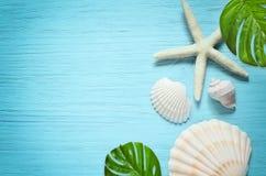 De zomer overzeese achtergrond - zeeschelpen op blauwe houten achtergrond Stock Fotografie
