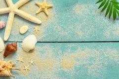 De zomer overzeese achtergrond Zeeschelpen, zeester en palmtak op een houten blauwe achtergrond Stock Afbeeldingen