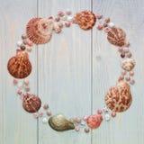De zomer overzeese shells om kader op houten planken De achtergrond van de reis Stock Fotografie