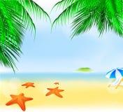 De zomer Palm Beach vector illustratie