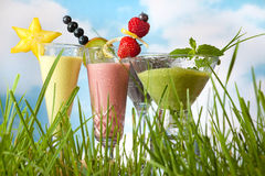 De zomer smoothies in de tuin royalty-vrije stock foto's