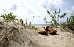 De zomer. Strand. Vakantie Stock Foto's