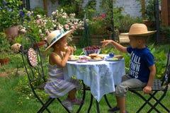 De zomer thee-tijd Stock Afbeeldingen