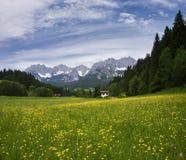 De zomer in Tirol royalty-vrije stock fotografie