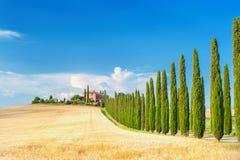 De zomer Toscaans landschap, groen gebied en blauwe hemel Royalty-vrije Stock Foto
