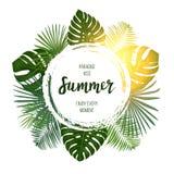 De zomer tropisch vectorontwerp voor banner of vlieger met groene pa Stock Afbeeldingen