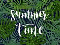 De zomer tropisch vectorontwerp voor banner of vlieger met palmweiland Stock Afbeelding