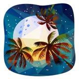 De zomer tropische nacht Royalty-vrije Stock Afbeelding