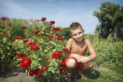 In de zomer, in de tuin op een heldere, zonnige dag, zit de jongen Ne Royalty-vrije Stock Afbeeldingen