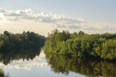 De zomer van de rivieryagenetta van het de zomerlandschap in het verre noorden Royalty-vrije Stock Fotografie
