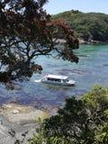 De zomer van Nieuw Zeeland: toeristen boot bij mariene reserve Royalty-vrije Stock Foto's