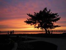 De zonsondergang van Rhode Island Stock Foto's
