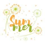 De zomer vectorkaart met paardebloemen Stock Afbeeldingen