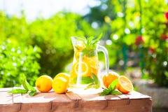 De zomer verse drinkt koud dranken Ijslimonade in de kruik en l royalty-vrije stock fotografie