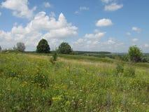 De zomer wild heuvelig terrein royalty-vrije stock afbeelding