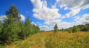 De zomer in Wit-Rusland Royalty-vrije Stock Foto