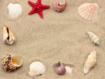 De zomerachtergrond Royalty-vrije Stock Foto's