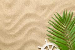 De zomerachtergrond met Groen Palmblad en Decoratieve Schipjonge os royalty-vrije stock fotografie