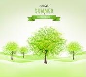 De zomerachtergrond met groene bomen Stock Foto's