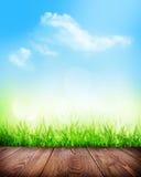 De zomerachtergrond met vloer, gras en bokeh Stock Foto's