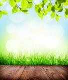 De zomerachtergrond met vloer, gras en bokeh Stock Foto