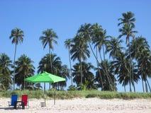 De zomerachtergrond - tropisch strand met palmen royalty-vrije stock afbeelding