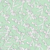 De zomerachtergrond van de contour van witte wasples op een groene achtergrond Lichtgewichttextuur voor stoffen, tegels, behang royalty-vrije illustratie
