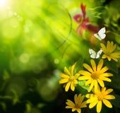 De zomerachtergrond van de kunst. Bloem en vlinder royalty-vrije stock fotografie
