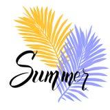 De zomeraffiche met het tropische palmblad en handschrift van letters voorzien vector illustratie