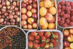 De zomerbessen en vruchten achtergrond Stock Foto's