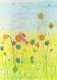 De zomerbloemen Royalty-vrije Stock Afbeeldingen