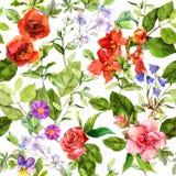 De zomerbloemen, weidegrassen, de lentekruiden Naadloze natuurlijke achtergrond watercolor vector illustratie