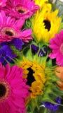 De zomerbloesem stock afbeeldingen
